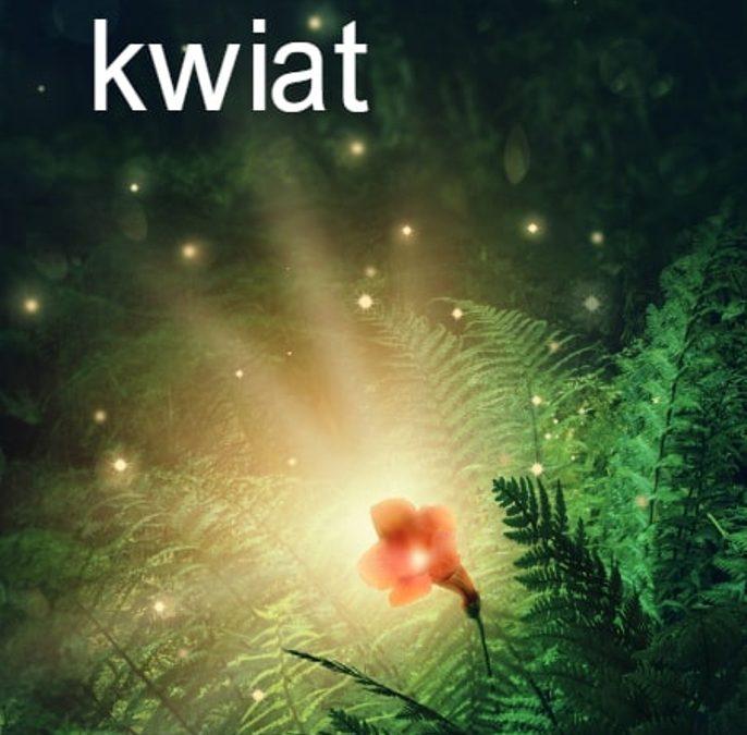 """Urzekające wiersze o tęsknocie: """"Perunowy kwiat"""""""