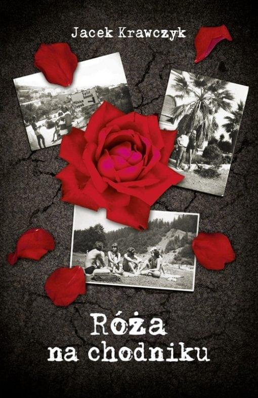 Róża na chodniku. Krawczyk Jacek